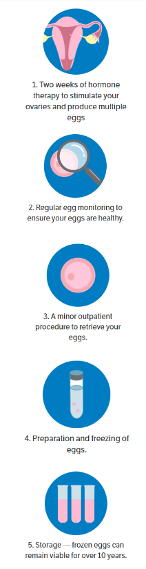 egg freezing graphic