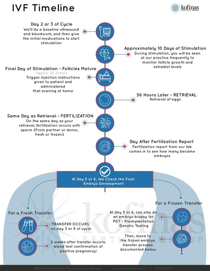 IVF egg steps infographic - printer friendly