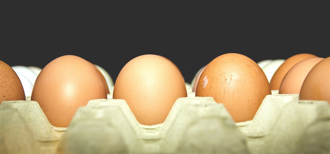 what to expect after egg retrieval